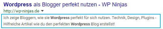 Google Snippet mit markiertem Description Tag