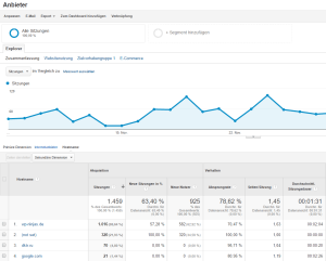 Referrer Spam in Google Analytics entdecken