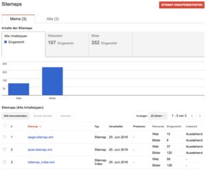 Google Search Console Sitemap Übersicht