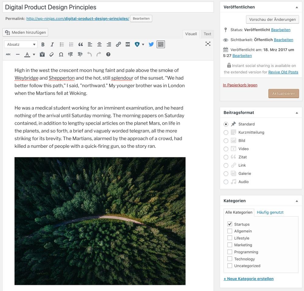 WordPress Classic Editor Beispiel
