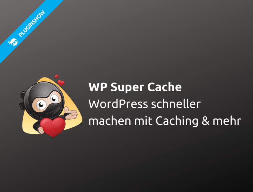 Mit dem besten WordPress Cache Plugin zu kürzeren Ladezeiten