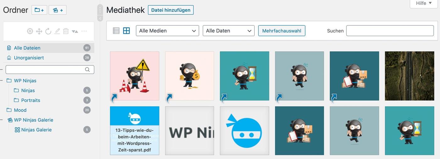 Screenshot von Real Media Library im Einsatz